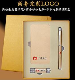 商务套装(8G手机电脑两用U盘+5000毫安电源+签字笔)5色可选   可定logo